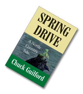 Spring Drive cover